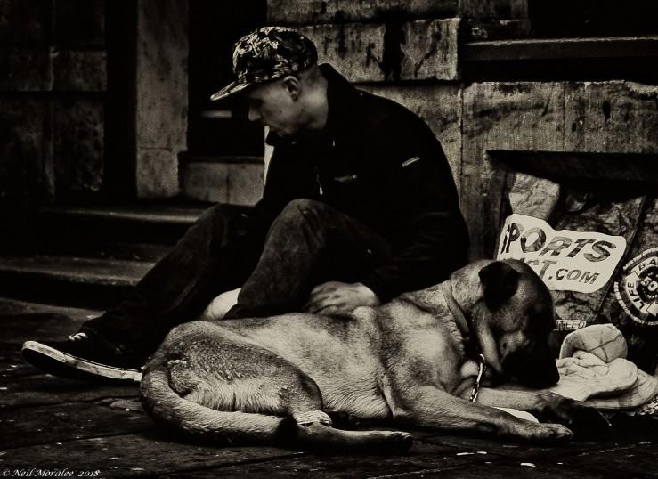 Homeless Man and Dog